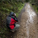 sierra-de-san-pedro-safari-fotografico