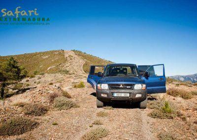 _-valle-de-los-tejos-safari-extremadura-3
