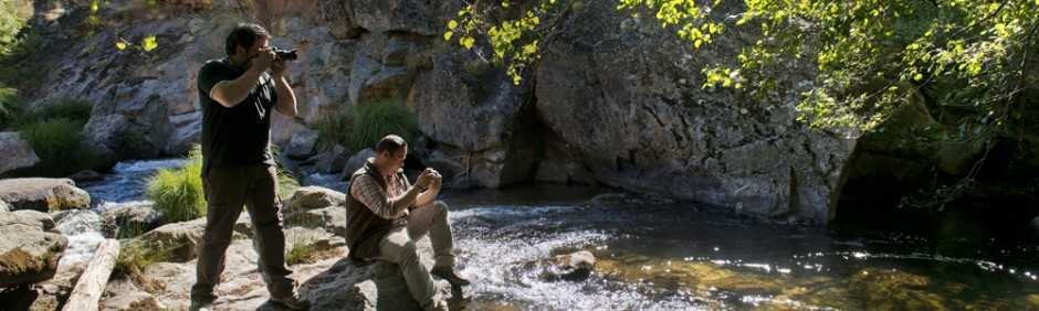 _-valle-de-los-tejos-safari-extremadura-7