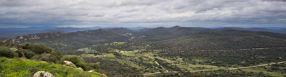 Cabecera 130119 Safari Sierra de San Pedro _CAR0380